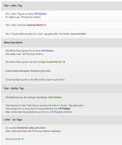 Website Check Auszug